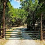 Texas Hill Country Gate